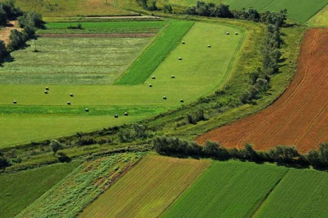 Poziv na Javni uvid-Program raspolaganja poljoprivrednim zemljištem